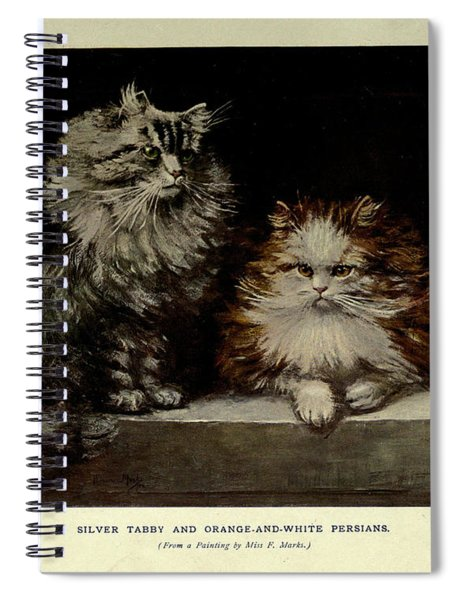 Silver Tabby And Orange And White Persians Spiral Notebook