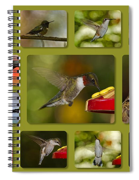 Spiral Notebook featuring the photograph Simply Sipping by Robert L Jackson