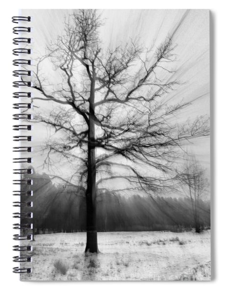 Single Leafless Tree In Winter Forest Spiral Notebook