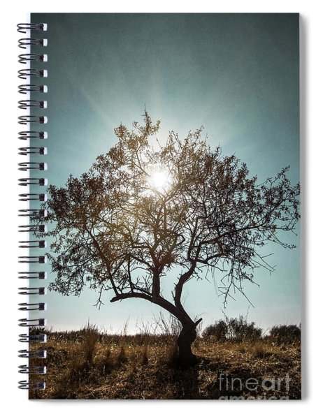 Single Tree Spiral Notebook