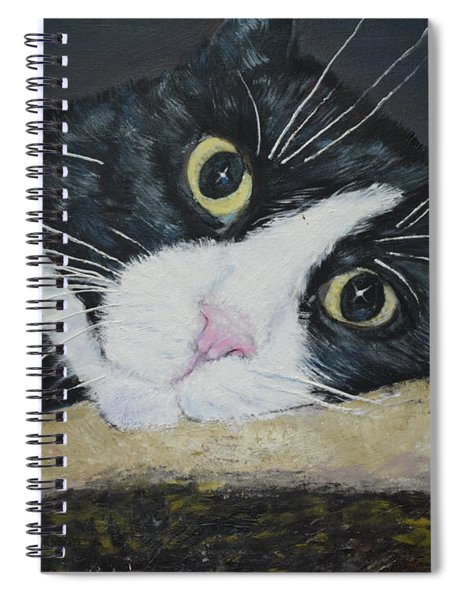 Sissi The Cat 3 Spiral Notebook