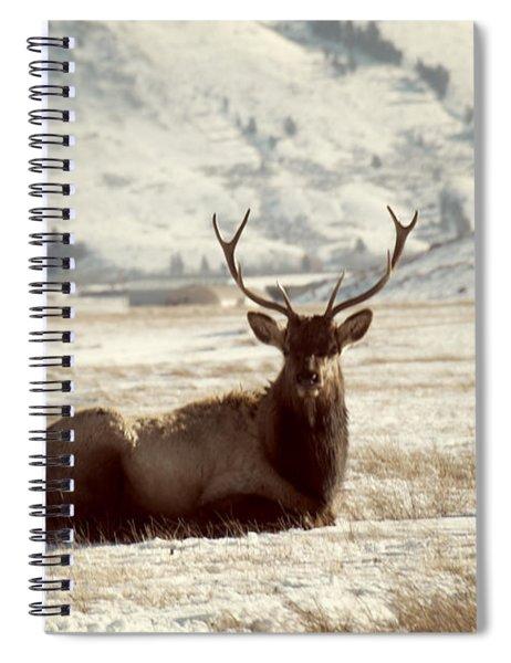 Sitting Bull Elk Spiral Notebook