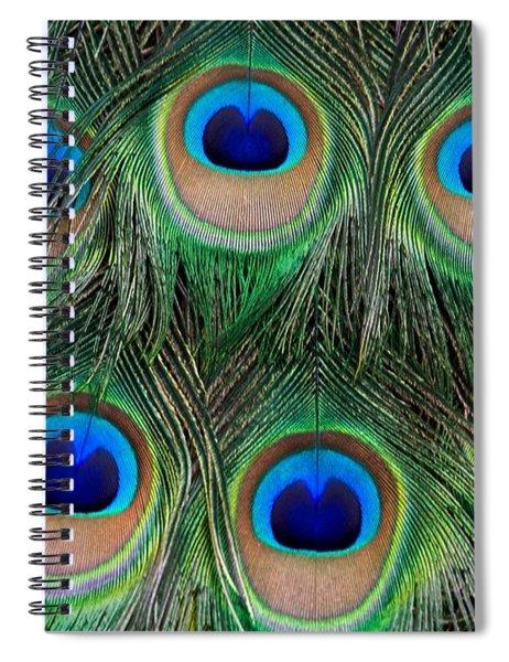 Six Eyes Spiral Notebook