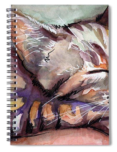 Sleeping Kitten Spiral Notebook