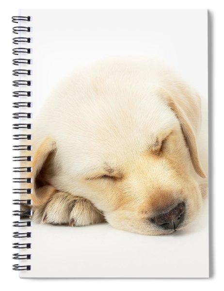 Sleeping Labrador Puppy Spiral Notebook