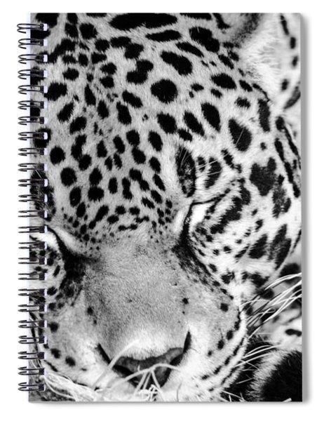 Sleeping Spiral Notebook