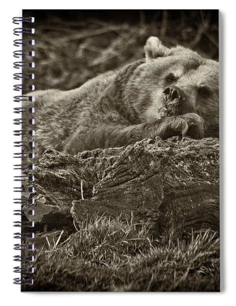 Sleepy Bear Spiral Notebook