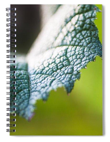 Slice Of Leaf Spiral Notebook by John Wadleigh