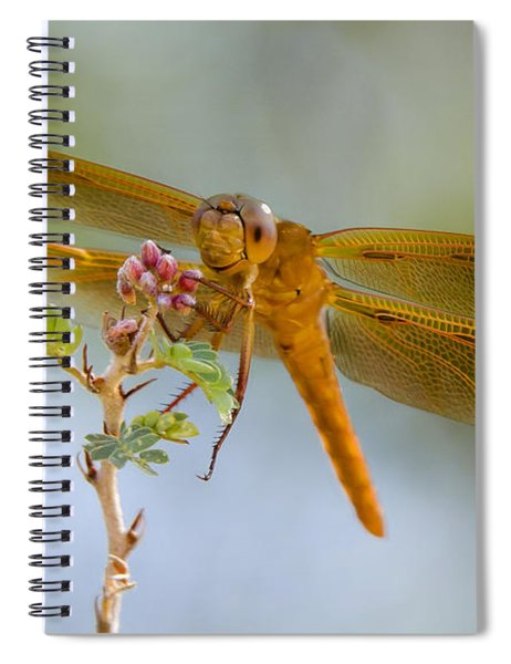 Smile And Be Happy  Spiral Notebook