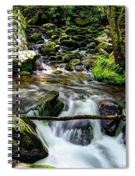 Smoky Mountain Stream 4 Spiral Notebook