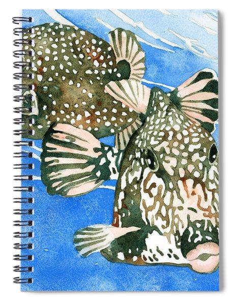 Smooth Trunkfish Pair Spiral Notebook