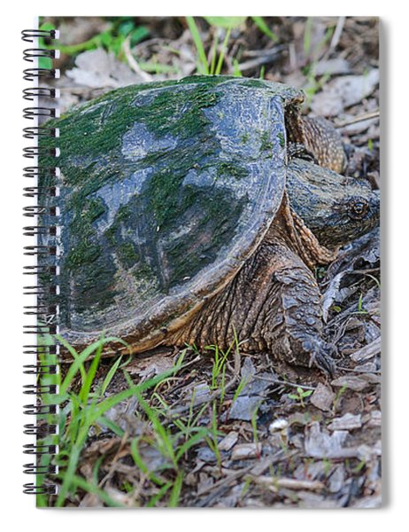 Spiral Notebook featuring the photograph Snapper Eggs by Edward Peterson