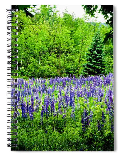 Sneaking Up On Lupines Spiral Notebook