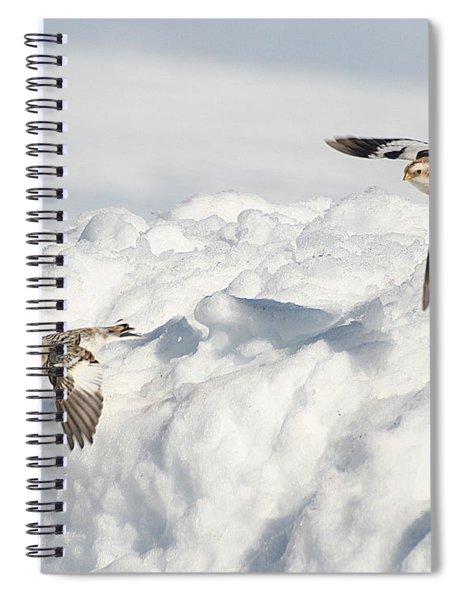 Snow Buntings In Flight Spiral Notebook
