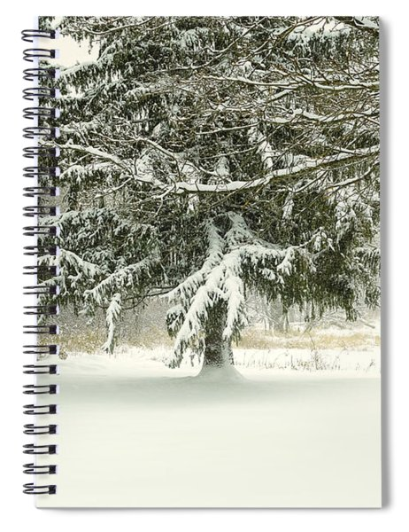 Snow-covered Trees Spiral Notebook
