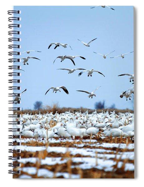 Snow Fall Spiral Notebook