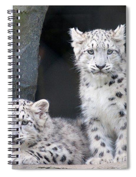 Snow Leopard Cubs Spiral Notebook