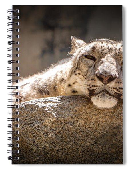 Snow Leopard Relaxing Spiral Notebook