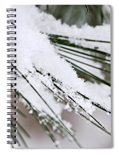 Snow On Pine Needles Spiral Notebook