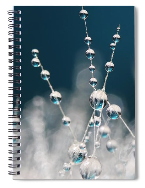 Snow White And Ice Blue Spiral Notebook