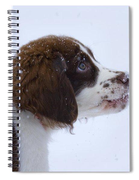 Snowflake Wonder Spiral Notebook