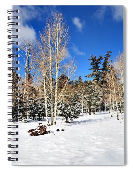 Snowy Aspen Grove Spiral Notebook