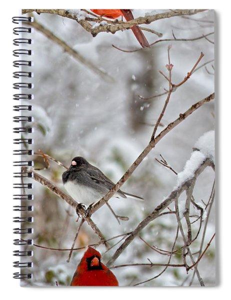 Snowy Grace Cardinals Spiral Notebook