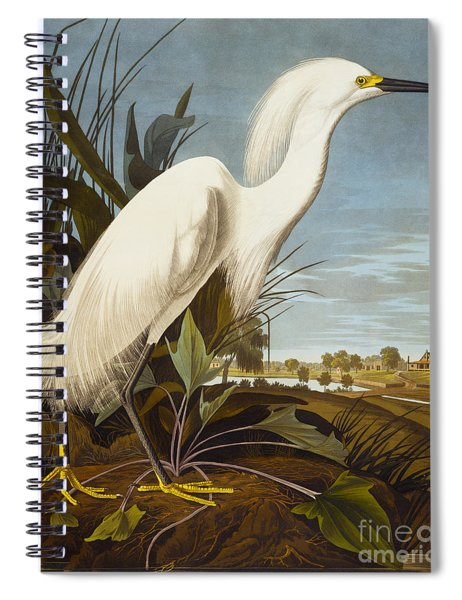 Snowy Heron Or White Egret Spiral Notebook