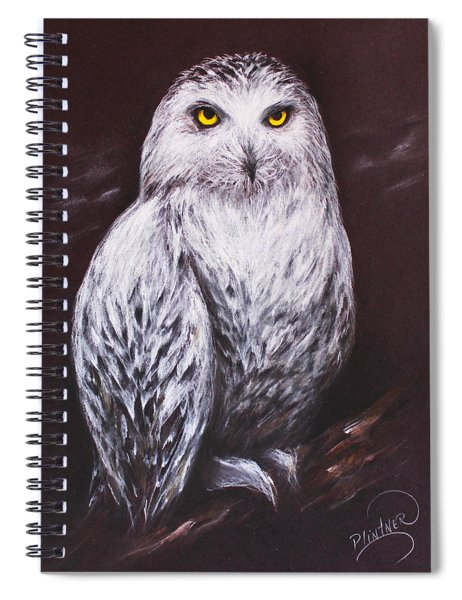 Snowy Owl In The Night Spiral Notebook