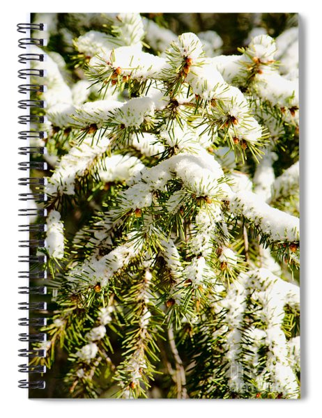 Snowy Pines Spiral Notebook