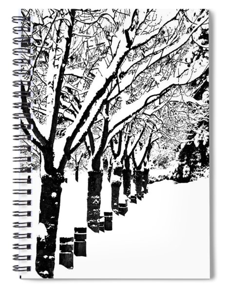 Snowy Walk Spiral Notebook