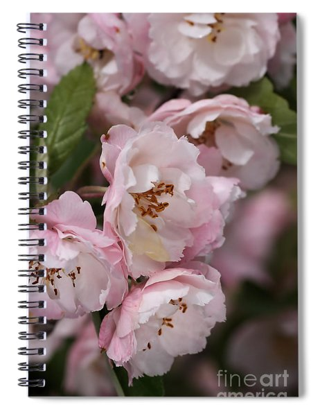 Soft Blossom Spiral Notebook