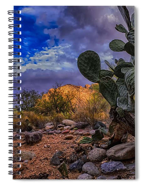 Sonoran Desert 54 Spiral Notebook