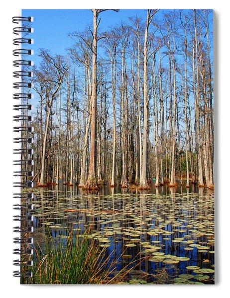 South Carolina Swamps Spiral Notebook