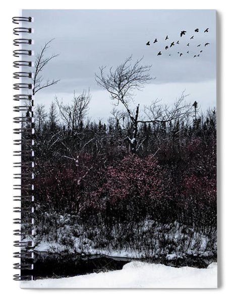 South To The Moon Spiral Notebook