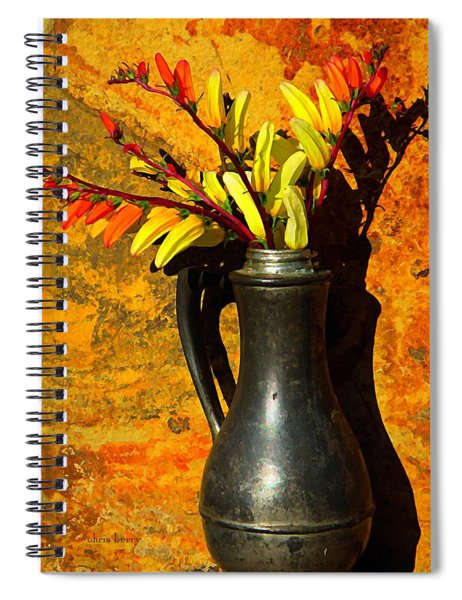 Spanish Flags In Pewter  Spiral Notebook