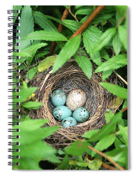 Sparrow Nest With A Cowbird Egg Spiral Notebook