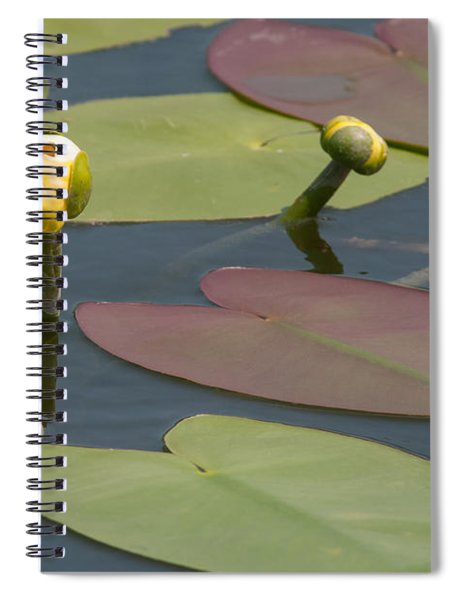 Spatterdock Heart Spiral Notebook