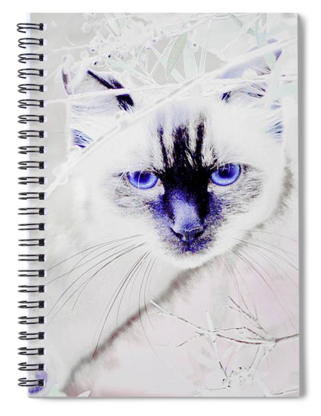 Spellbound Spiral Notebook