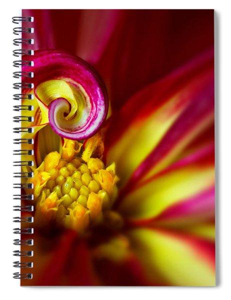 Spiral Spiral Notebook
