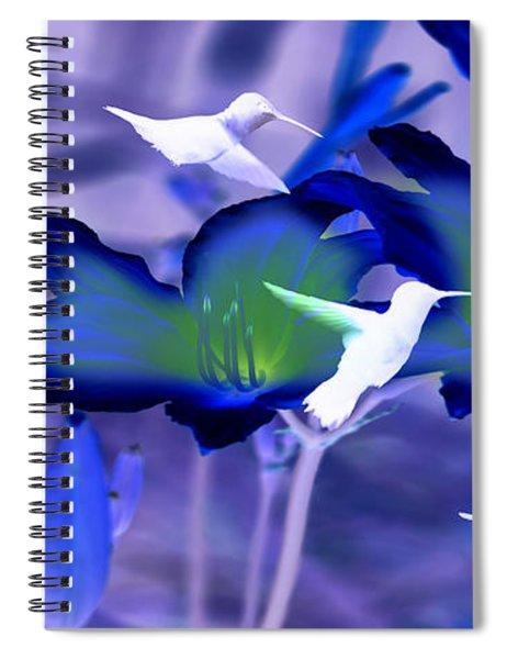 Spirit Of The Humming Bird Spiral Notebook
