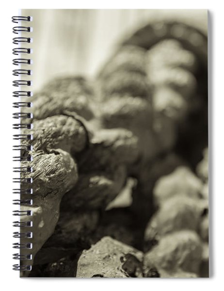 Spliced And Bound Black And White Sepia Spiral Notebook