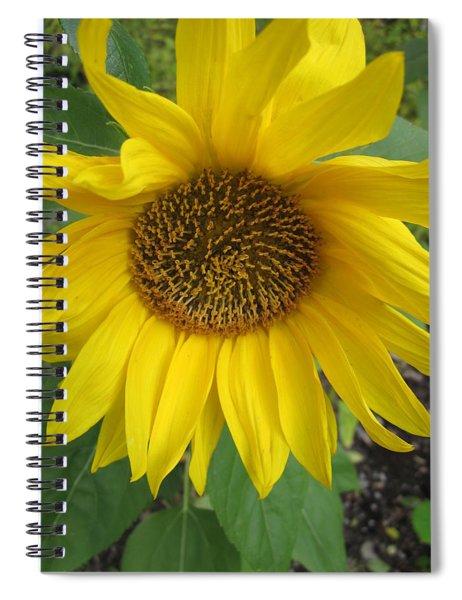 Sprawling Spiral Notebook