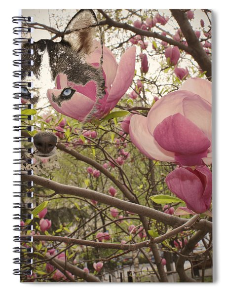 Spring And Beauty Spiral Notebook