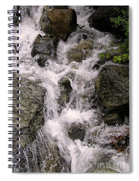 Spring Creek Spiral Notebook