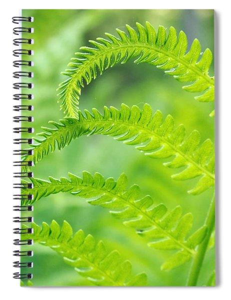 Spring Fern Spiral Notebook