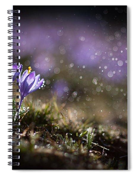 Spring Impression I Spiral Notebook