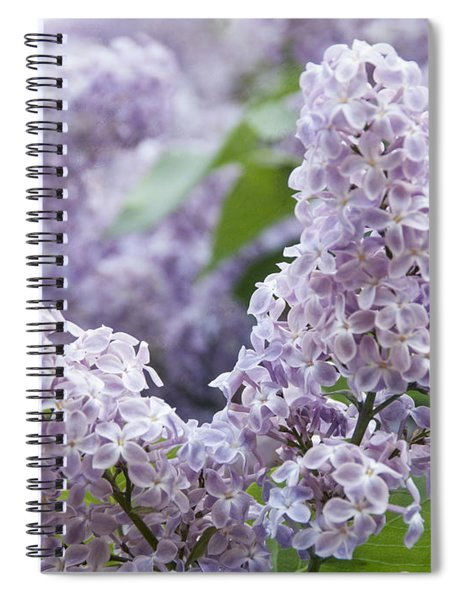 Spring Lilacs In Bloom Spiral Notebook
