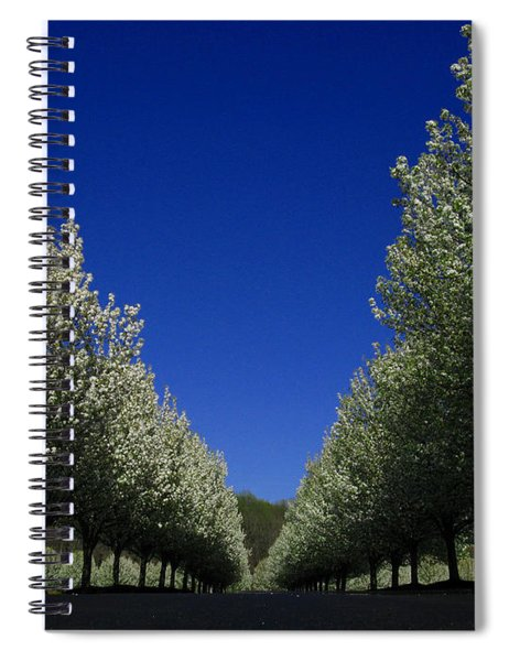 Spring Tunnel Spiral Notebook