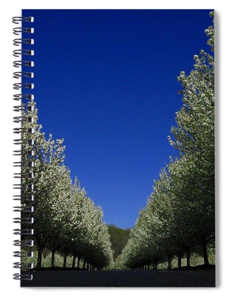 Spring Tunnel Spiral Notebook